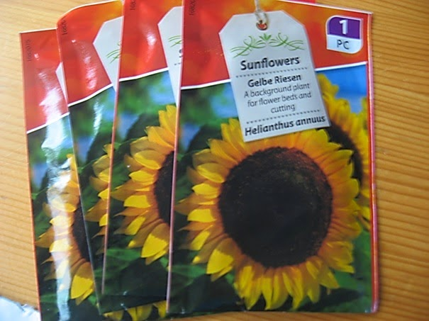 Zonnebloemenzaad Atelier de Vier Jaargetijden