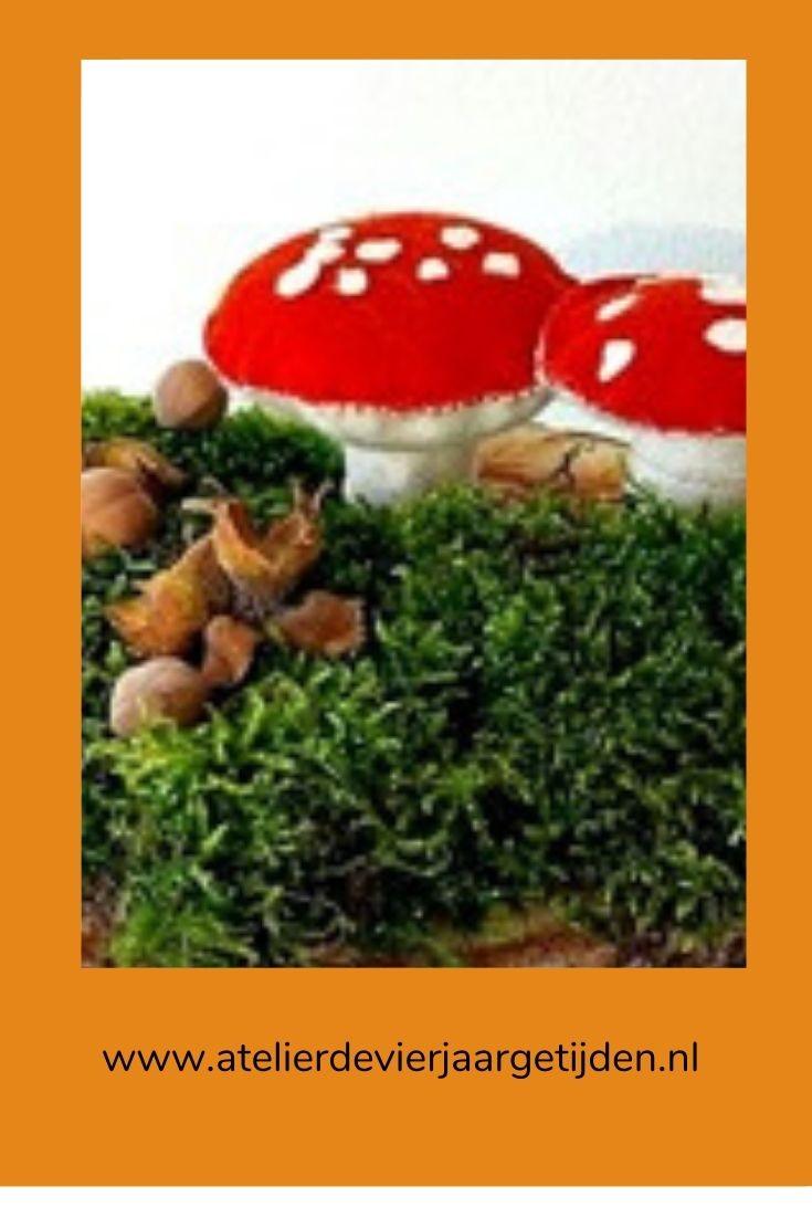 Pin paddenstoelen van vilt